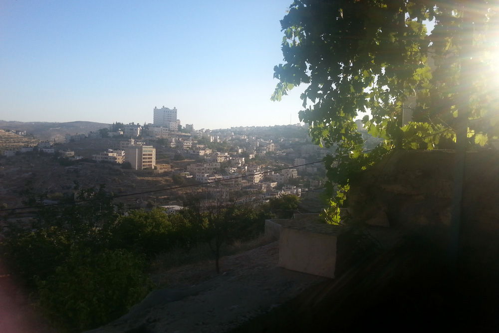 The view from the garden outside my house in Bethlehem, with Dheisheh refugee camp below. (Photo by Mya Guernieri)