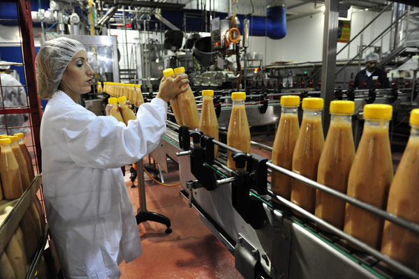 Food factory worker in Sderot. (Illustrative photo by ChameleonsEye / Shutterstock.com)