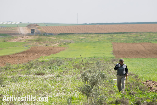 A Palestinian farmer walks through fields near Gaza's eastern border, Al Montar, February 17, 2014. An Israeli military post is seen in the distance to the left, with the border indicated by the dark green areas passing through it. (photo: Ryan Rodrick Beiler/Activestills.org)