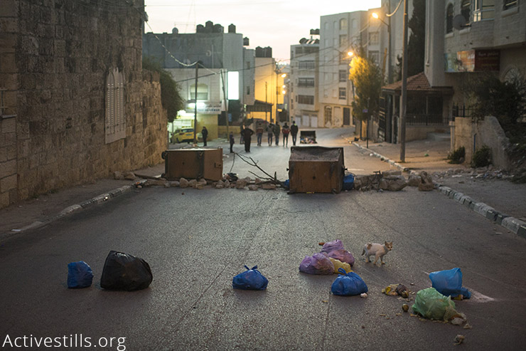A cat walks past a barricade of stones and garbage, set up by Palestinian youth during clashes with the Israeli army in the town of al-Bireh near the West Bank Israeli settlement of Psagot. (Activestills.org)