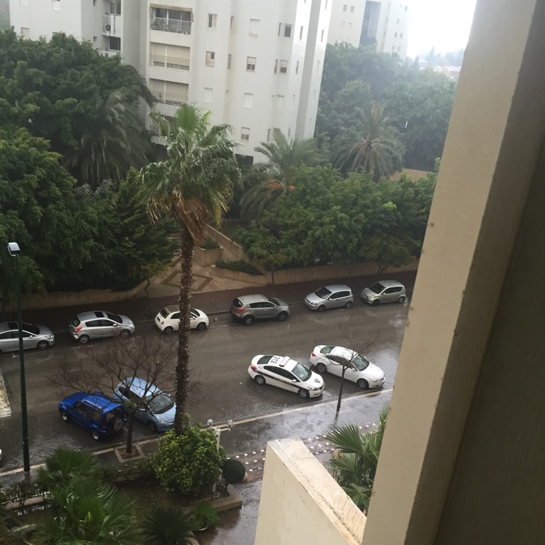 Marked and unmarked police cars parked outside Muhammad Abdel Kader's apartment in Ramat Aviv. (Photo by Muhammad Abdel Kadder)