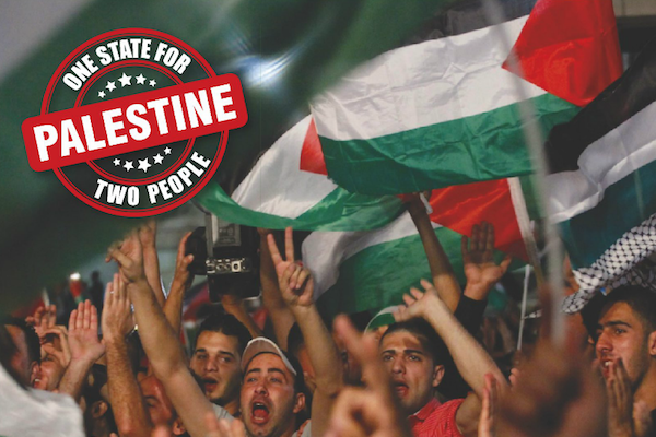 An image from a Commanders for Israeli security campaign calling for a two-state solution. (CIS)