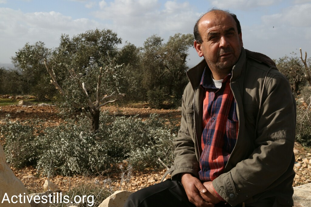 Riyad Abu Hanieh sits near one of his olive trees that was uprooted for the sake of building a settler-only road, near Qalqilya, West Bank, January 8, 2017. (Keren Manor/Activestills.org)