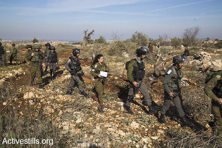 Israeli soldiers arrive in Izbat Tabib with a closed military zone order, January 16, 2017. (Keren Manor/Activestills.org)