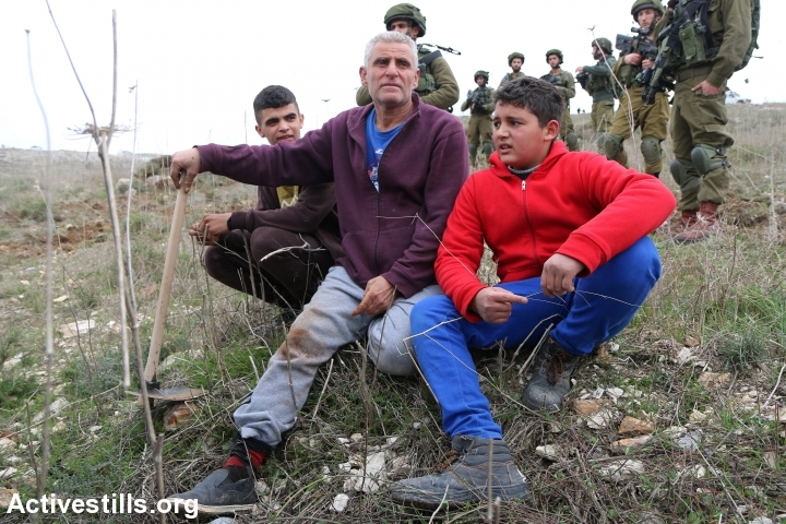 Israeli soldiers provoke Palestinian farmers and volunteers while planting olive trees and tiling soil to protest the recent Israeli military order that would confiscate about three Dunams of Palestinian private lands for 'security reasons' for the nearby settlement of Yitzhar, Asira Al-Qibliya village, near Nablus, West Bank, January 26, 2017. (Ahmad al-Bazz/Activestills.org)