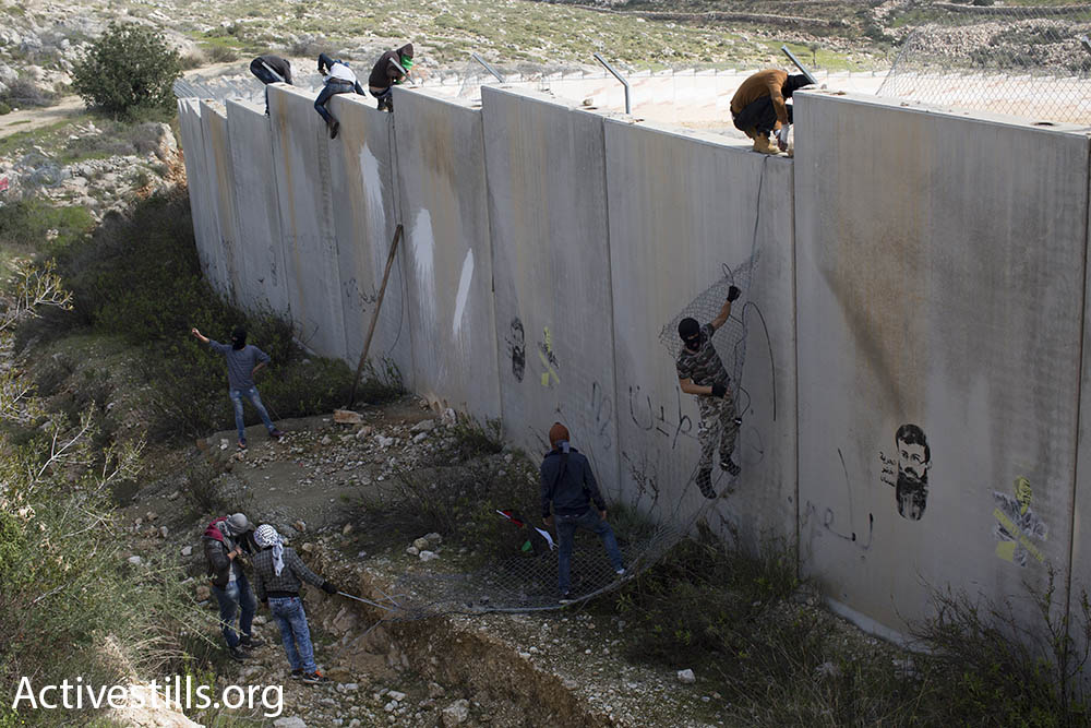 Palestinian youths climb the Israeli separation barrier in Bil'in, tearing down fencing from the top of the wall, February 17, 2017. (Faiz Abu-Rmeleh/Activestills.org)