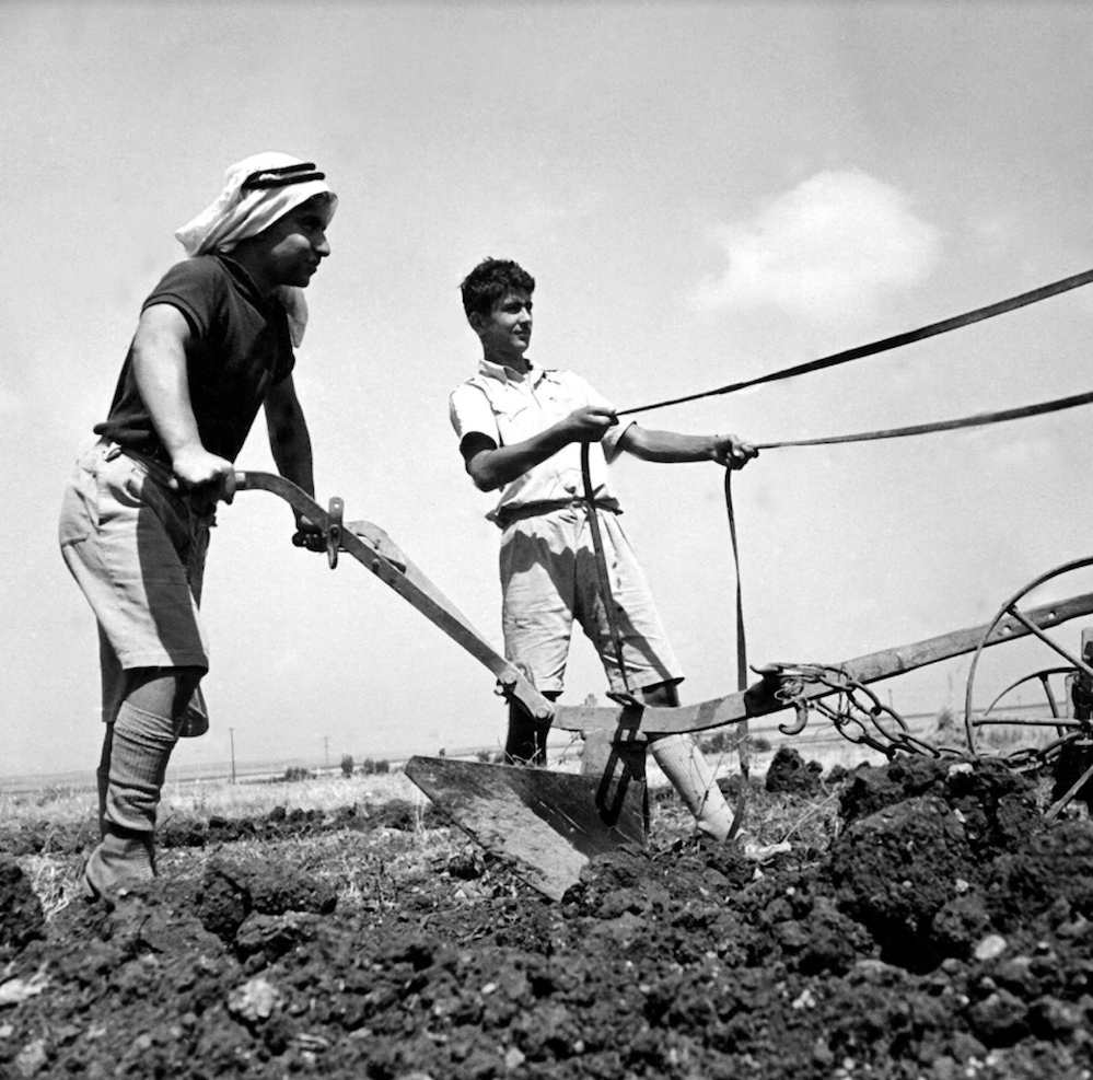 Photo from the Kadoorie Agricultural School, Tulkarm. (Photo Schwartz collection)