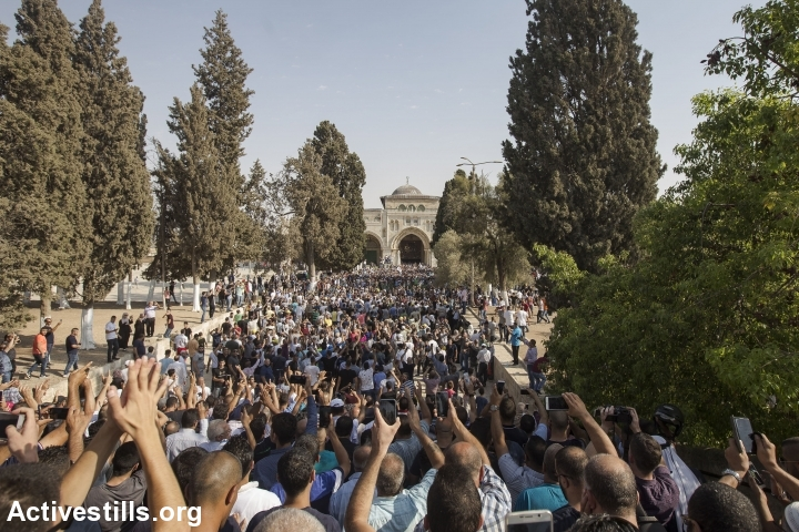 Palestinian worshipers celebrate by returning to Al-Aqsa after boycotting Israeli security measures at the entrance to the site, July 27, 2017, Jerusalem. (Activestills.org)