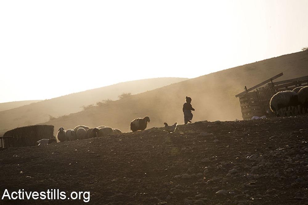 Ein Al-Hilweh, Jordan Valley, November 16, 2017. (Keren Manor/Activestills.org)