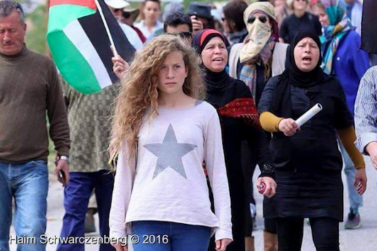 Ahed Tamimi seen in a protest in Nabi Saleh. (Haim Schwarczenberg)