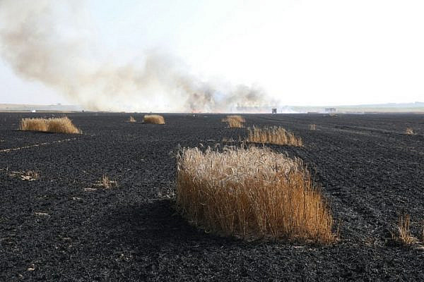 A burned field belonging to kibbutz Nir Oz, after it was lit on fire by kite bombs flown from Gaza, May 15, 2018. (Oren Ziv/Activestills.org)