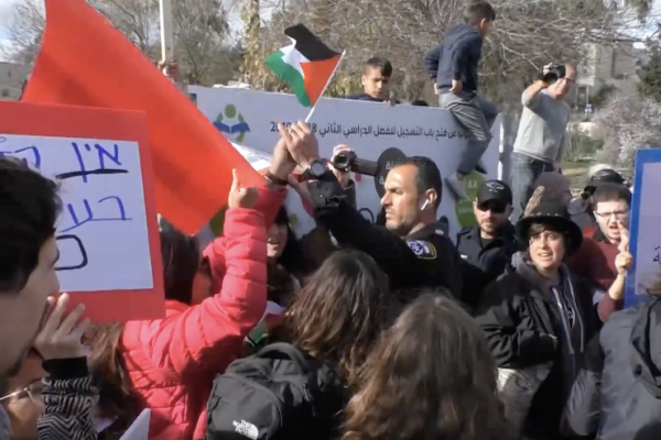 An Israeli police officer snatches a Palestinian flag from +972 writer Orly Noy during a demonstration in the East Jerusalem neighborhood of Sheikh Jarrah, February 8, 2019. (YouTube screenshot)