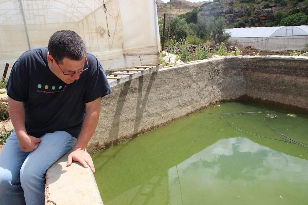 Haim Weiss, a Jewish Israeli who lives in nearby Tzur Hadassah, helps guard Wadi Fuqin's pools against settlers. (Arianna Skibell)