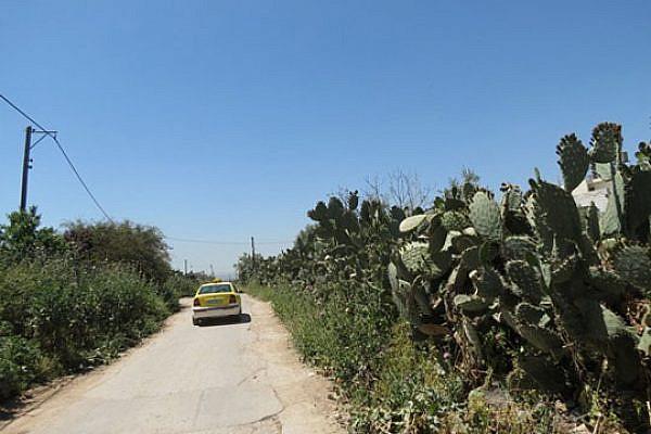 Palestinian cab (Yuval Ben-Ami)