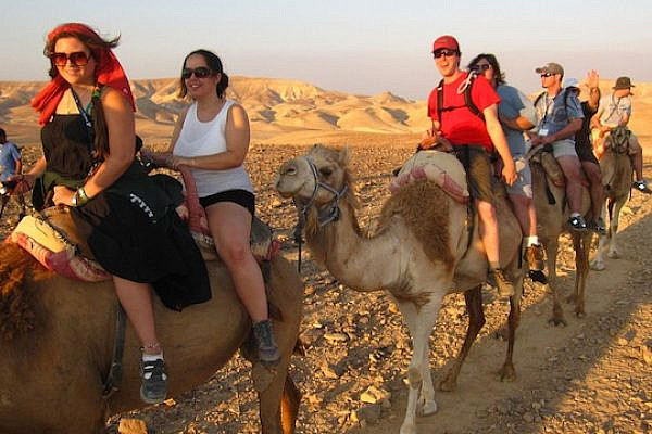 Tourists riding camels in Israel [illustrative] (photo: flickr / idovermani CC BY 2.0)