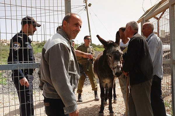 IDF soldiers and police return a donkey stolen from Palestinians by settlers in Tapuach. (Photo: Yossi Gurvitz)