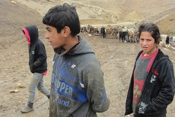 Palestinian children in Khirbat Yarze, where the IDF destroyed homes on Tuesday, December 10 2013 (Image: Attef Abu-Arub, B'tselem)