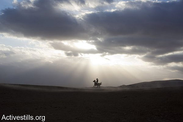 A Youth rides a horse next to his unrecognised Bedouins villages in the Negev, Israel, December 10, 2013. According to the recently published Israeli Prawer-Begin plan map, some 40,000 Bedouin would be displaced and around 250,000 dunams of Bedouin land would be expropriated by the state. (photo: Keren Manor/Activestills.org)