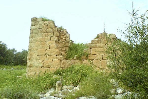 The remains of the Palestinian village Bayt Shanna, near Ramle. (photo: palestineremembered.com)