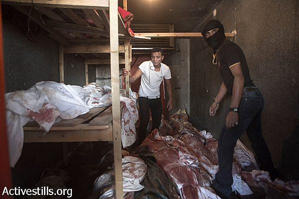 Bodies are stored in a cooler used for vegetables and flowers near Kuwaiti Hospital after it ran out of space to store corpses following Israeli attacks in Rafah, Gaza Strip, August 3, 2014. Since Al Najjar Hospital was closed, Kuwaiti, a nearby private hospital, opened its doors for emergency cases. (Anne Paq/Activestills.org)