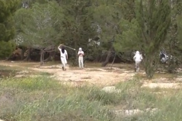 Havat Maon settlers throwing stones at Israeli activists, March 28, 2015 (photo: Ta'ayush)