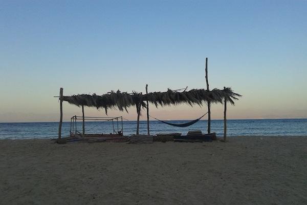 Sinai beach. (photo: Orly Noy)