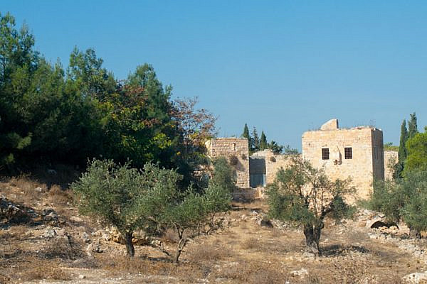 A view of olive trees and a stone home near Bethlehem. (Photo: Mariait/Shutterstock.com)