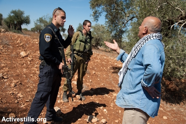 An Israeli police officer inspects damage done Palestinian-owned olive trees by suspected Israeli settlers, October 20, 2013. (File photo by Activestills.org)