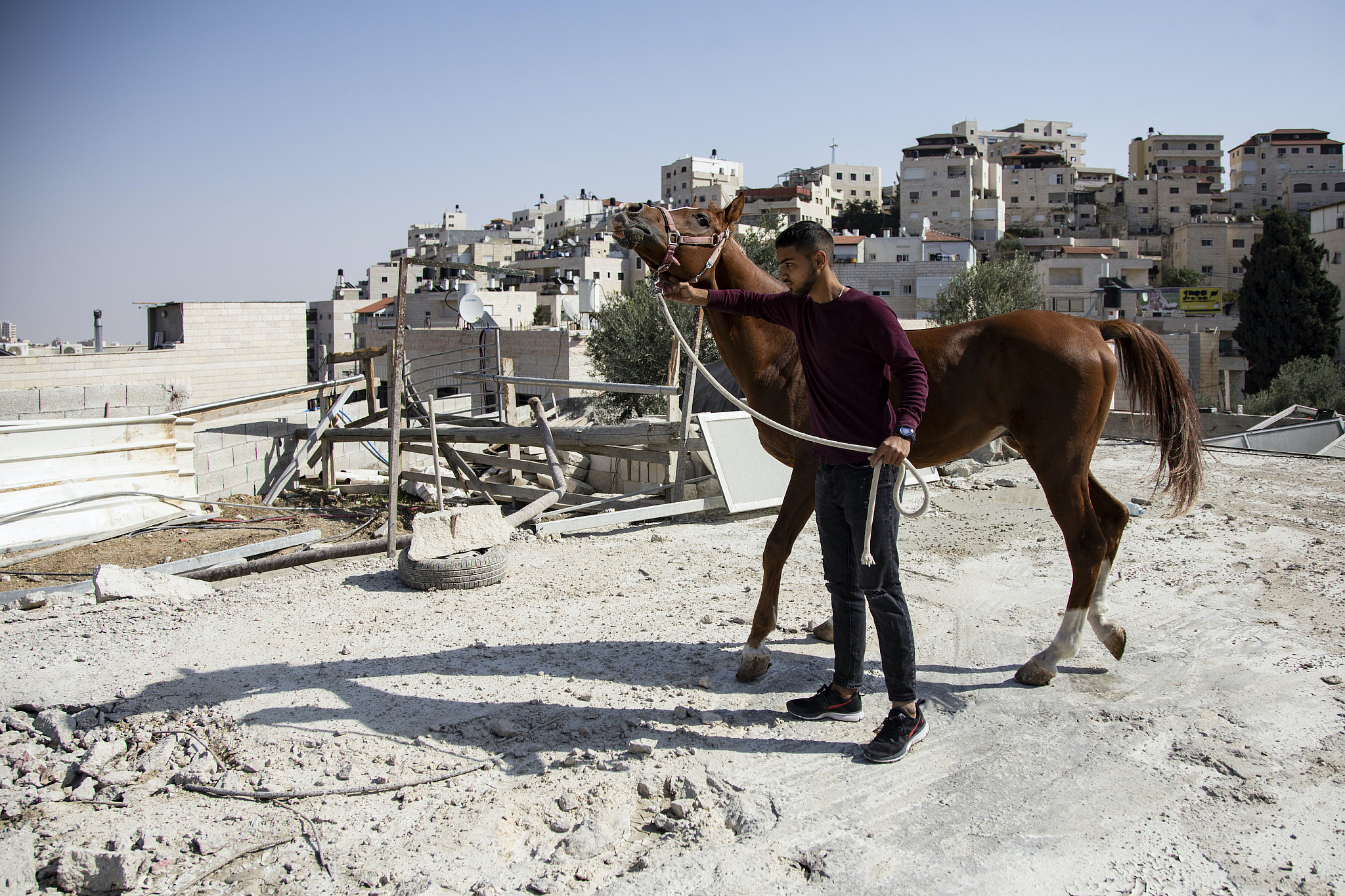 Ishaq Hamdan's son stands with his horse next to a stable demolished by the Israeli authorities, Issawiya, East Jerusalem, November 7, 2019. (Faiz Abu Rmeleh/Activestills.org)