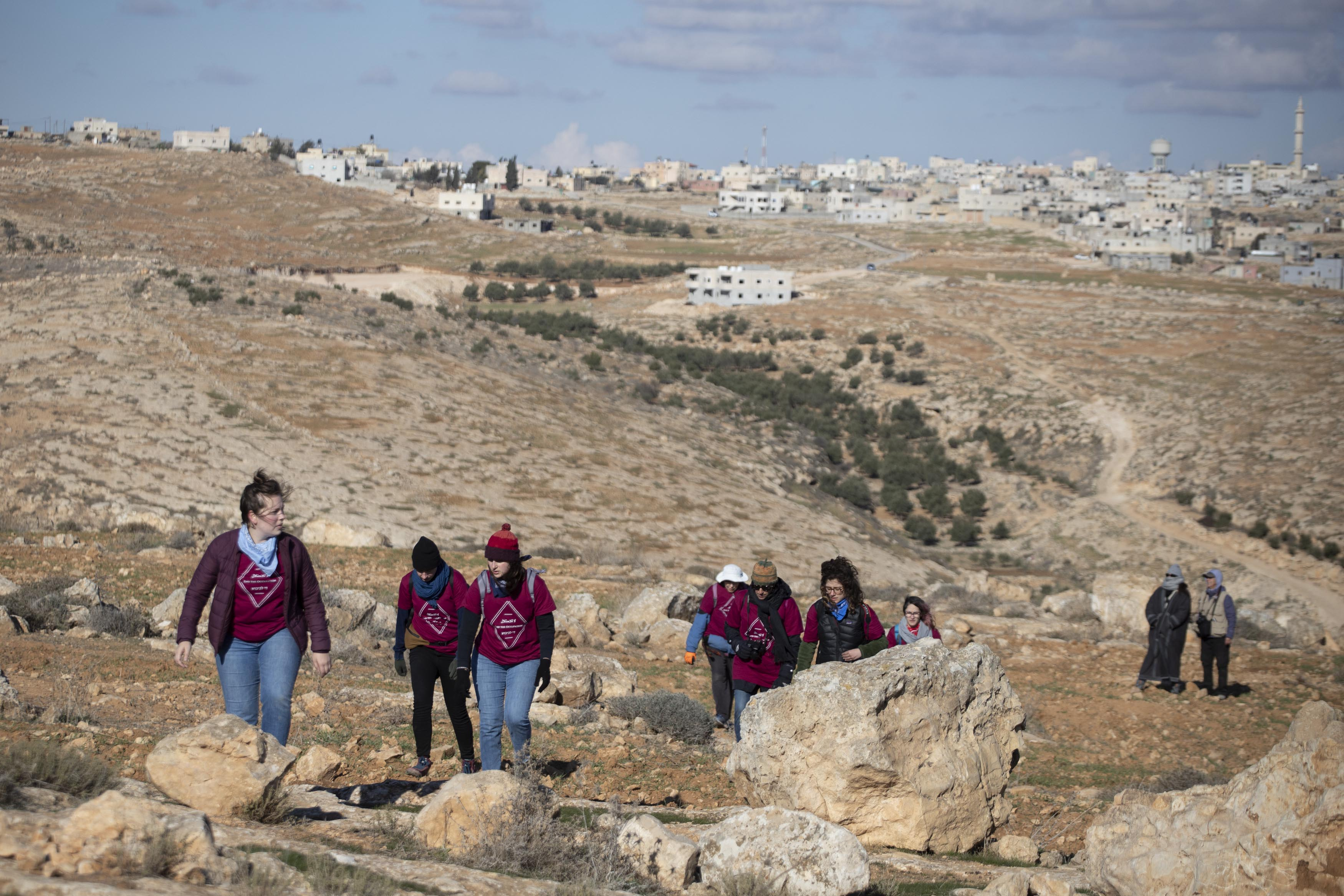 Palestinian, Israeli and international activists make their way to the Ein Albeida spring, South Hebron Hills, January 3, 2020. (Oren Ziv/Activestills.org)