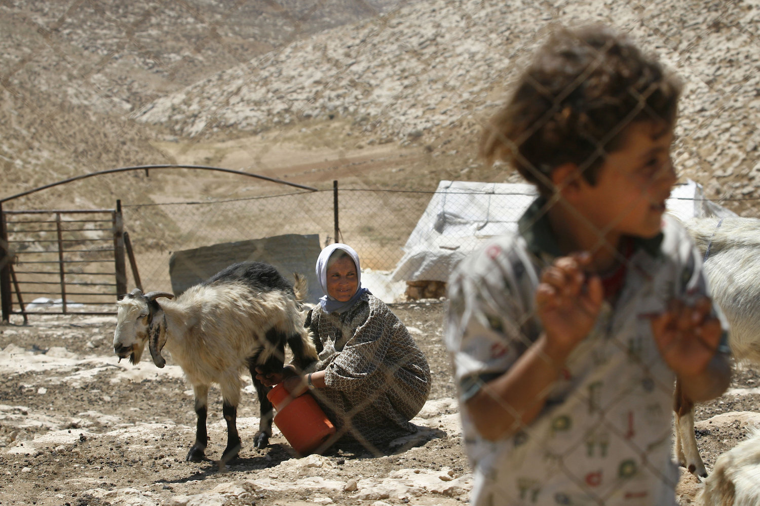A Palestinian family in the south Hebron Hills, July 23, 2007. (Michal Fattal/Flash90)