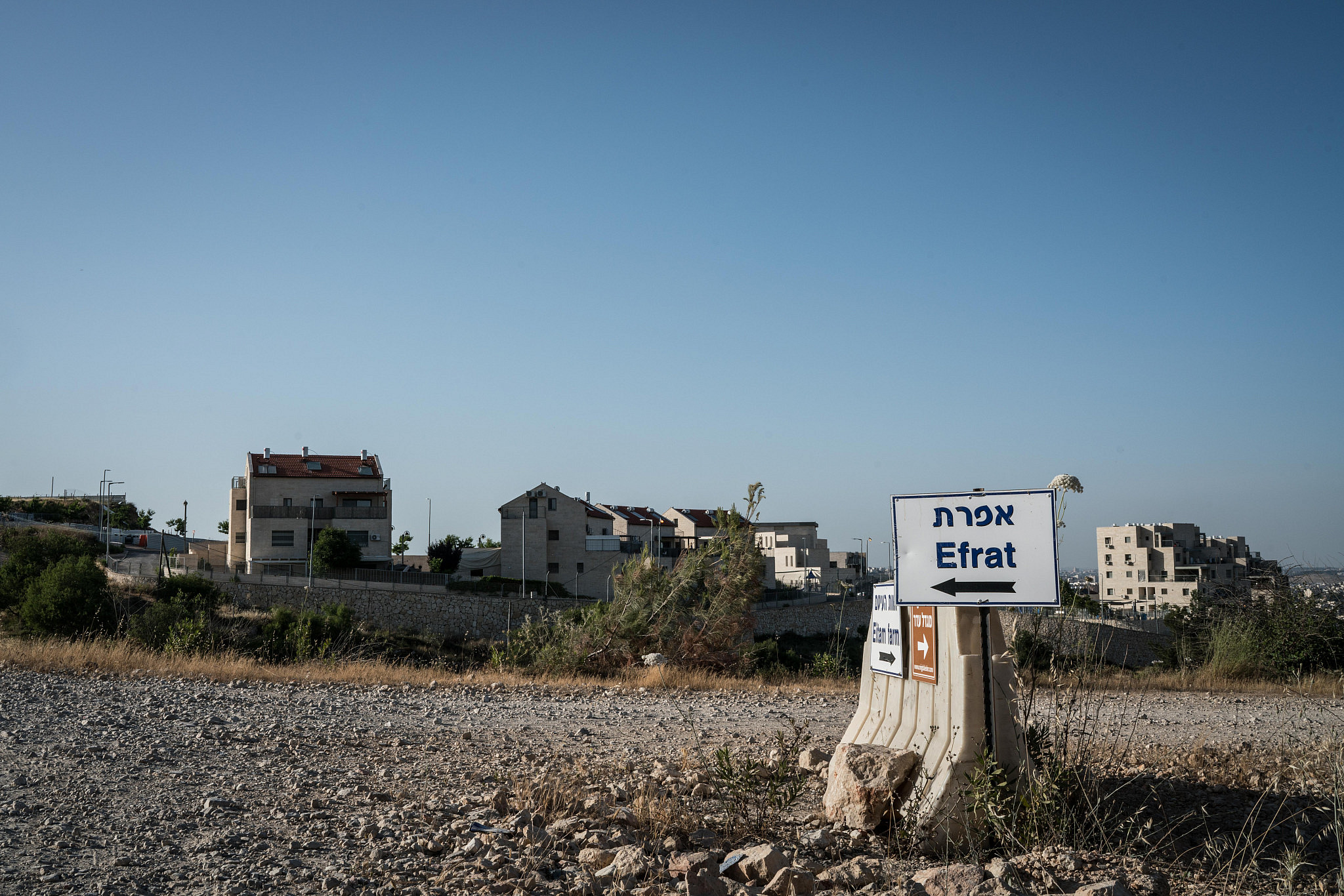 A sign pointing to the Israeli settlement of Efrat in the occupied West Bank. June, 2020. (Samar Hazboun)