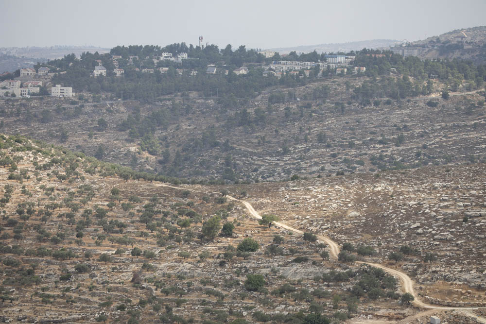 The area Road 935 is planned to pass through, August 12, 2020. (Oren Ziv)