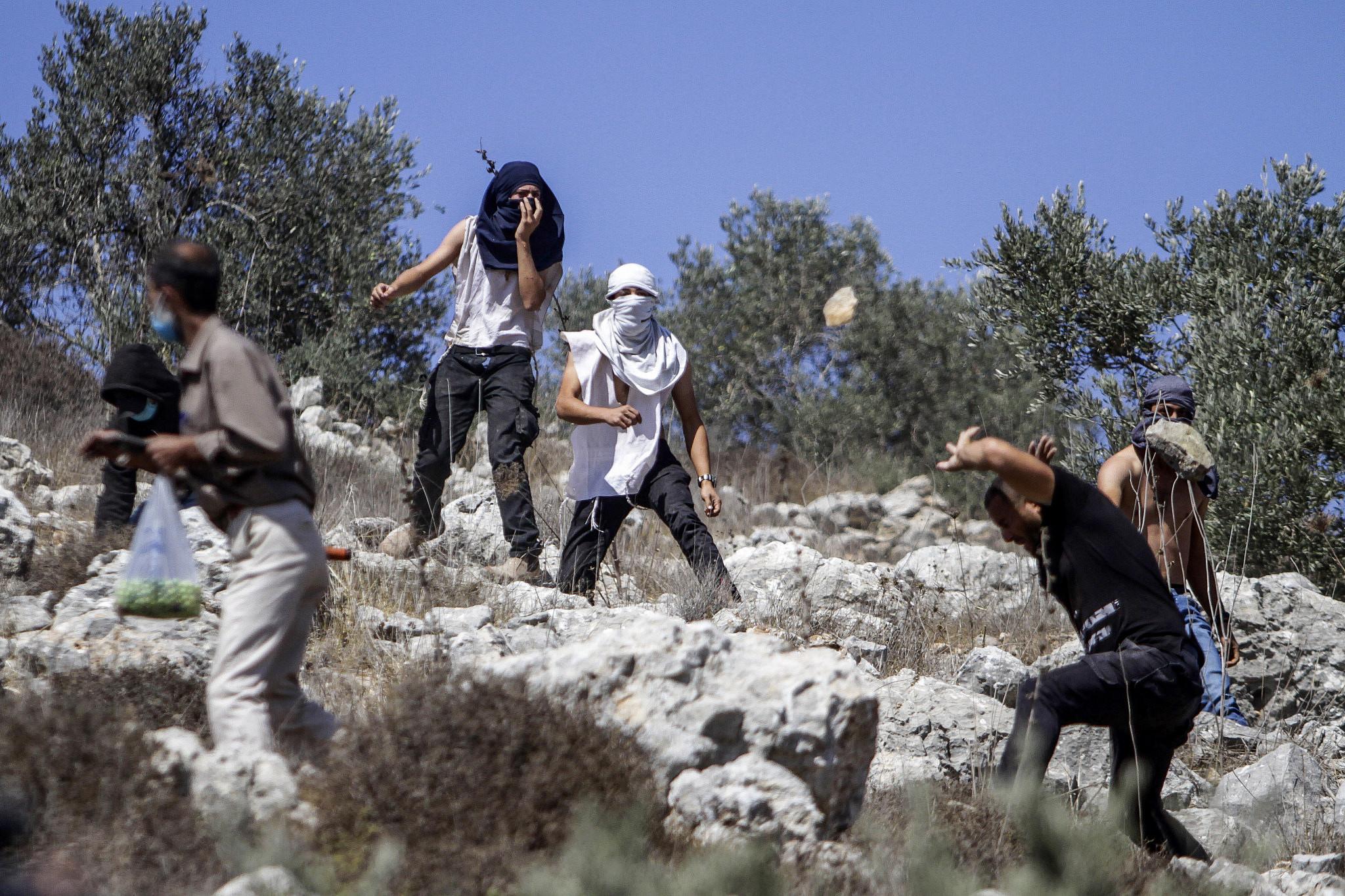 Israeli settlers hurl stones at Palestinians during the annual harvest season near the Israeli settlement of Yitzhar in the West Bank on October 7, 2020. (Nasser Ishtayeh/Flash90)