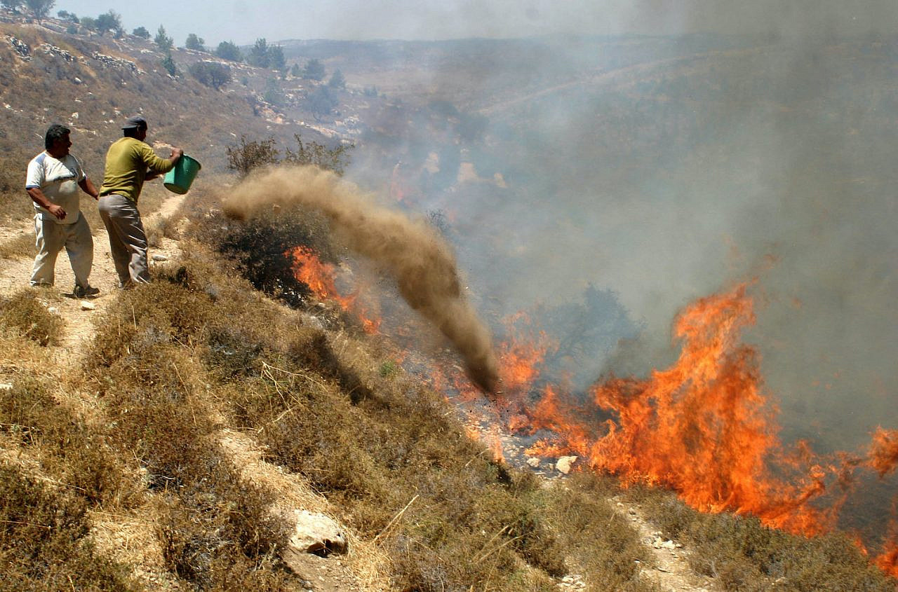 Palestinians trying to extinguish the fires sparked by Jewish settlers on agricultural land in the southern West Bank village of Safa, near Hebron, on July 13, 2009. (Najeh Hashlamoun Flash90)