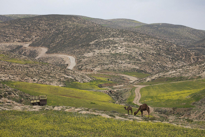 General view of Firing Zone 918, near Masafer Yatta in the South Hebron Hills, West Bank, Feb. 20, 2019. (Oren Ziv/Activestills)